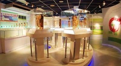 Photo of Science Museum พิพิธภัณฑ์การแพทย์ศิริราช (Siriraj Medical Museum) at คณะแพทยศาสตร์ศิริราชพยาบาล, บางกอกน้อย 10700, Thailand