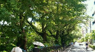 Photo of Trail 風の散歩道 at 下連雀1丁目-3丁目, 三鷹市, Japan