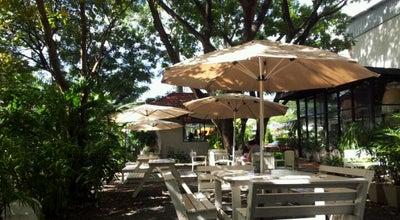 Photo of Coffee Shop ร่มไม้ไออุ่น (Rom Mai Ai Aoon) at 349 Inthra Phon Rd., Wang Thonglang 10310, Thailand