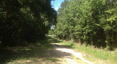 Photo of Trail Fern Trail at Tallahassee, FL, United States