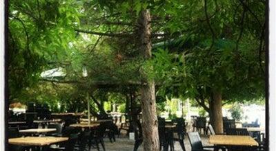 Photo of Cafe Sunshine at Odtü Kampüsü, Çankaya, Turkey