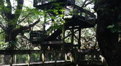 Photo of Park Tree Tops Park at 3900 Sw 100th Ave, Davie, FL 33328, United States