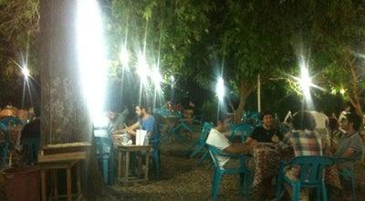 Photo of Cafe Ezgi Kafe at Silifke 33960, Turkey