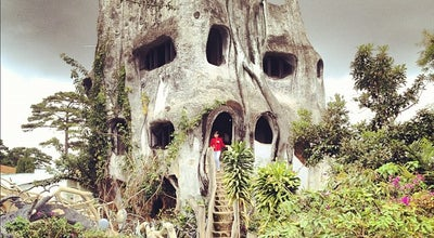 Photo of Hotel The Crazy House at 3 Huynh Thuc Khang, Da Lat, Vietnam