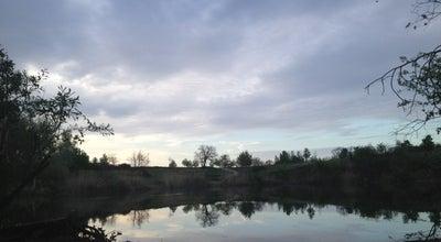 Photo of Lake Heidesee at Karlsruhe, Germany