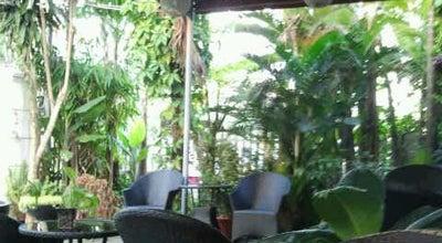 Photo of Spa NQ Spa at 446 Cua Dai, Hoi An, Vietnam