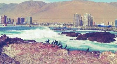 Photo of Beach La Peninsula at Chile