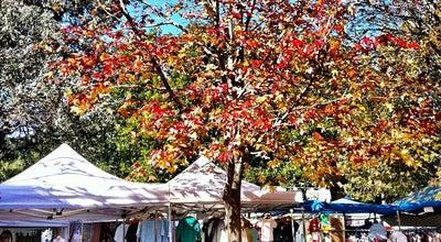 Photo of Flea Market Glebe Markets at 9-25 Derwent St., Glebe, NS 2037, Australia