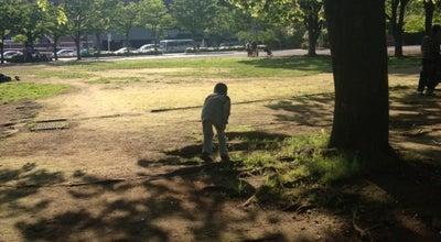 Photo of Park 茅ヶ崎中央公園 at 茅ヶ崎2-3-1, 茅ヶ崎市 253-0041, Japan