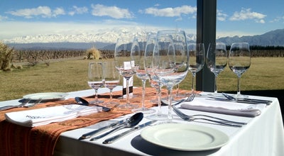 Photo of Winery Bodega Ruca Malen at Ruta Nacional 7 Km 1059, Mendoza, Argentina