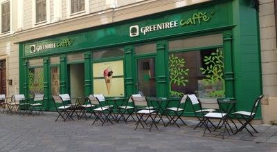 Photo of Cafe Greentree Caffé at Ventúrska 20, Bratislava 811 01, Slovakia