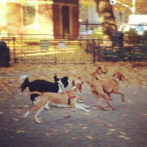Stuyvesant Square Park Dog Run