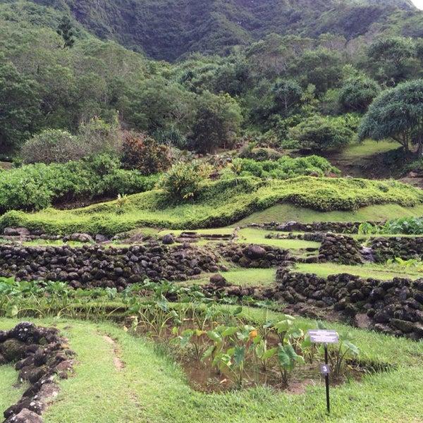 Limahuli Garden And Preserve Garden