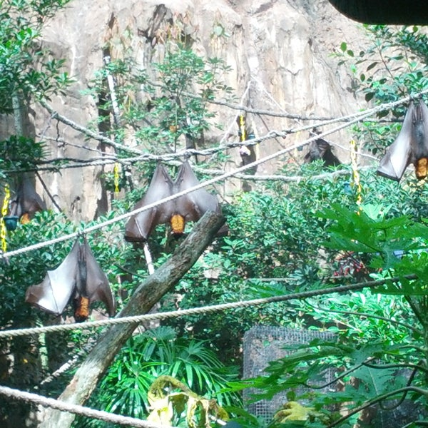 Photo taken at Maharajah Jungle Trek by Andrew H. on 8/10/2014