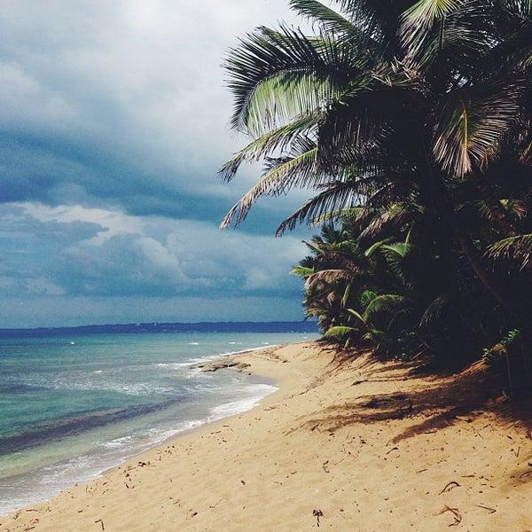 Sandy Beach: Surf Spot In Rincon