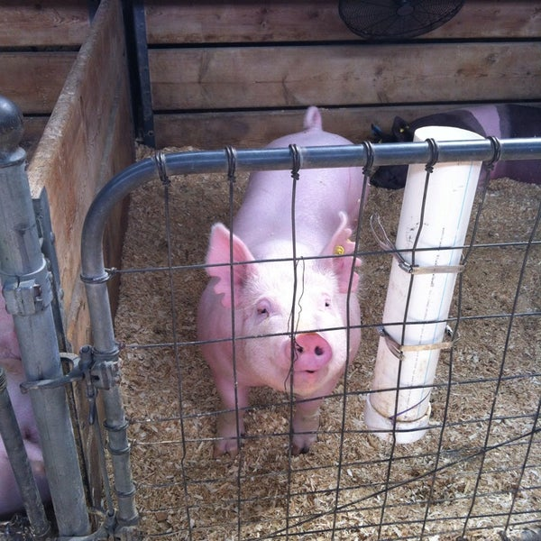 Photo taken at Swine Barn by Navin R. on 8/30/2014