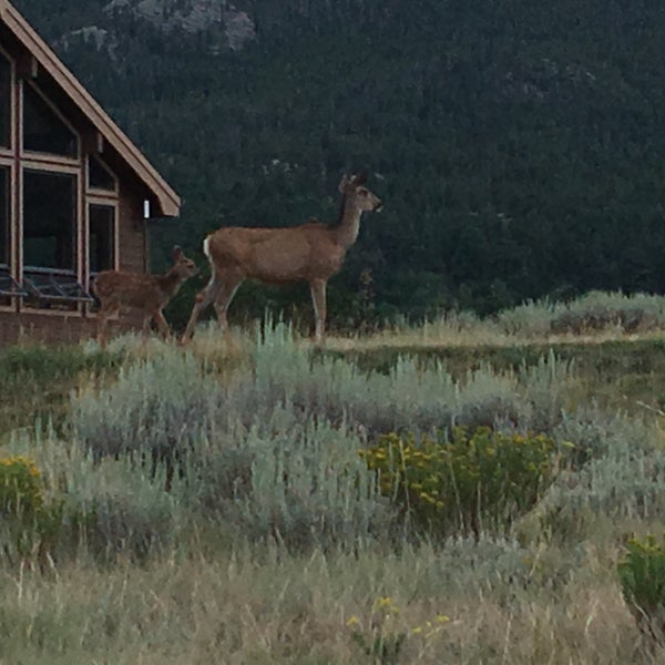 Great views at every turn. The reunion cabins are very well laid out. Wildlife everywhere.