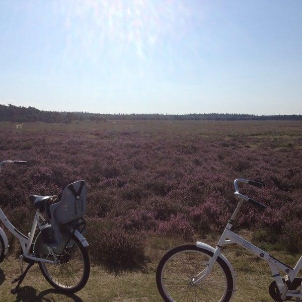 Photo taken at Nationaal Park De Hoge Veluwe by Vera on 8/27/2013