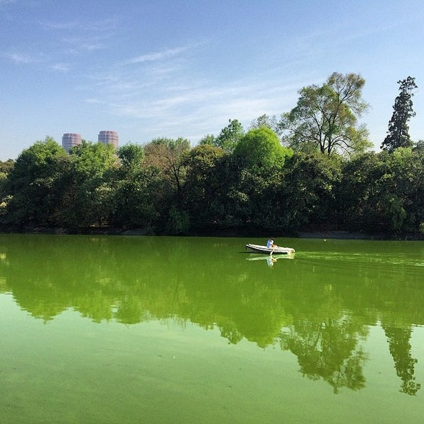 Photo taken at Bosque de Chapultepec by Bruno R. on 3/13/2014
