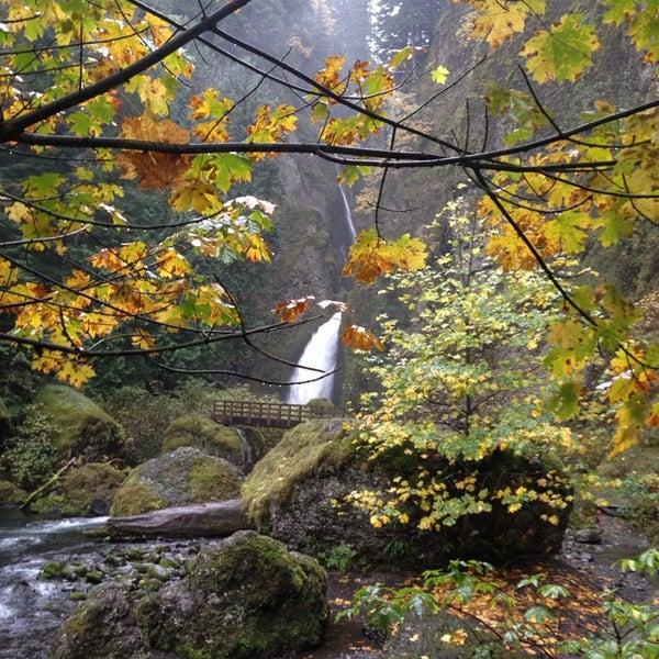 Photo taken at Wahclella Falls Trail by Sara K. on 11/3/2014