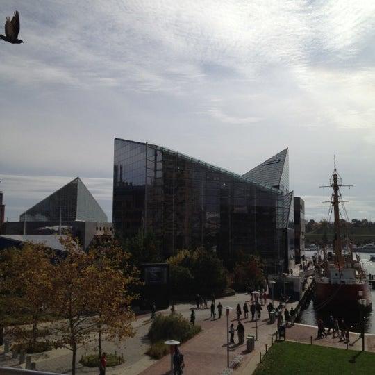 Photo taken at National Aquarium by Natalie Kate B. on 10/27/2012