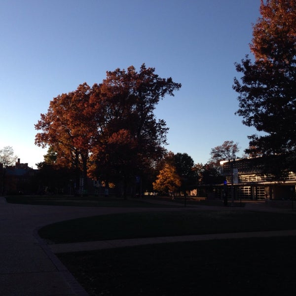 Photo taken at Washington University in St. Louis by Camille S. on 11/9/2013