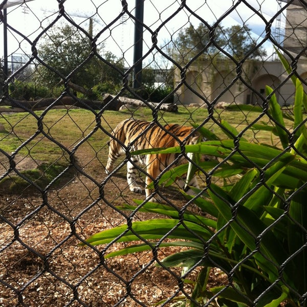 Photo taken at LSU - Mike's Habitat by Tj S. on 3/7/2013