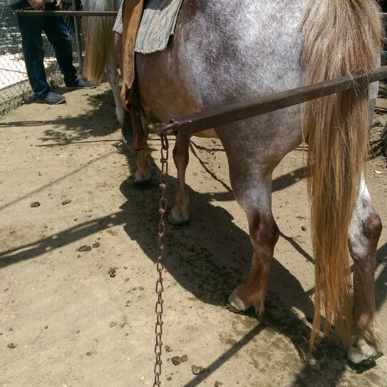 Photo taken at Griffith Park Pony Rides by Néstor M. on 5/18/2014
