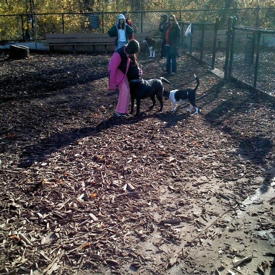 Photo taken at Cunningham Park Dog Run by Asha K. on 11/23/2012