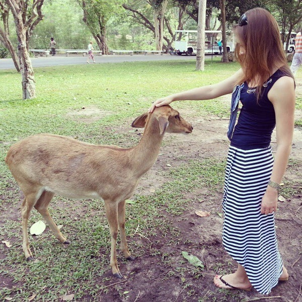 Photo taken at Khao Kheow Open Zoo by Aleksey S. on 2/25/2013