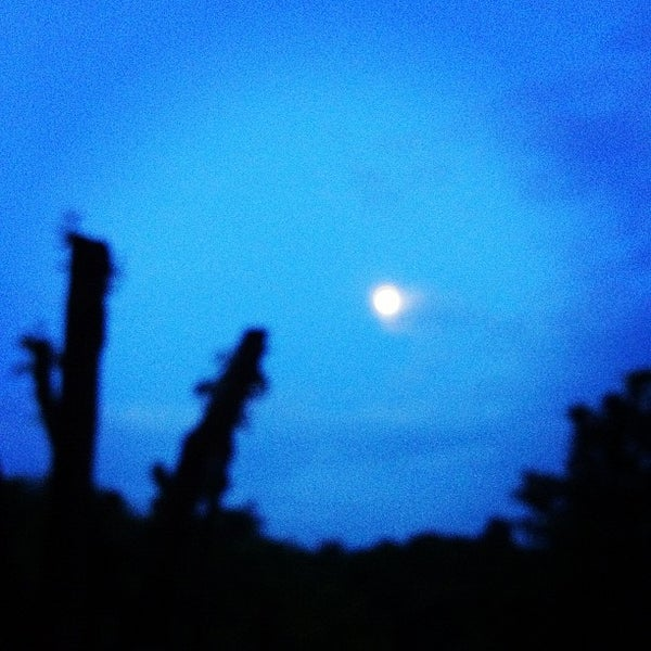 Photo taken at Lampang Vineyard by Jesada K. on 9/28/2012
