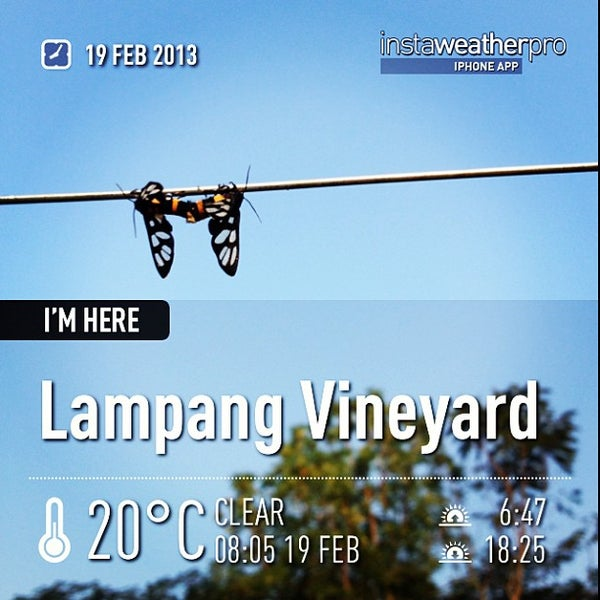 Photo taken at Lampang Vineyard by Jesada K. on 2/19/2013