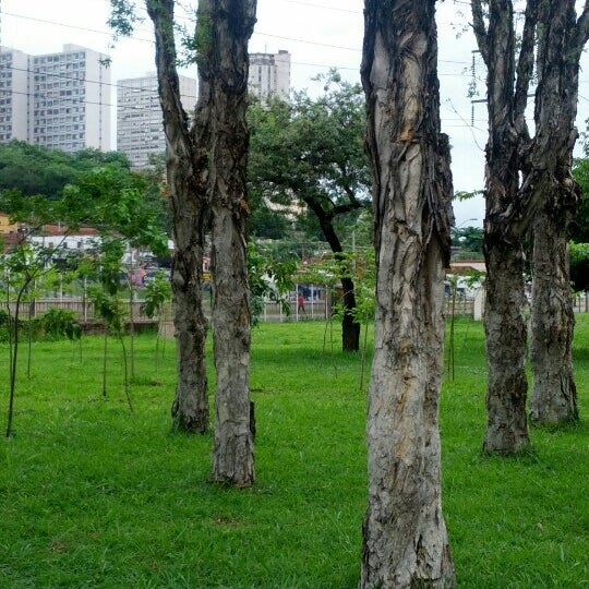 Photo taken at Parque Ecológico Maurilio Biagi by Marcio Antonio d. on 11/26/2012