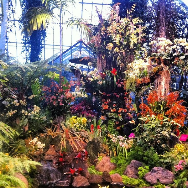 New york botanical garden bronx park 2900 southern blvd for Bronx botanical garden free admission