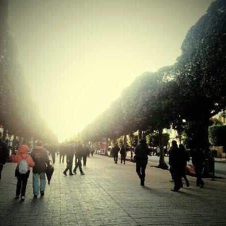 Photo taken at Avenue Habib Bourguiba by Amine B. on 2/7/2013