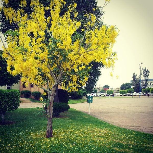 Photo taken at Universidad del Valle de Atemajac (UNIVA) by José P. on 6/26/2013