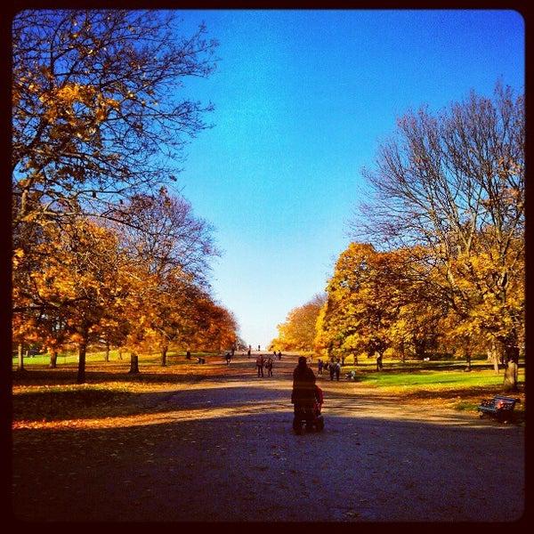 Photo taken at Kensington Gardens by Simon O. on 11/14/2012