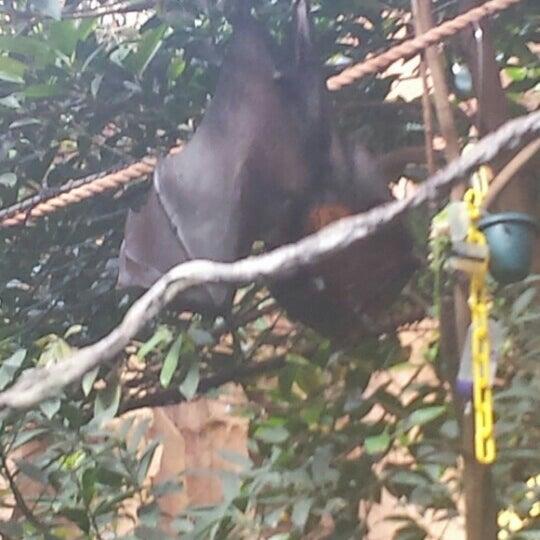 Photo taken at Maharajah Jungle Trek by Dann D. on 10/9/2015