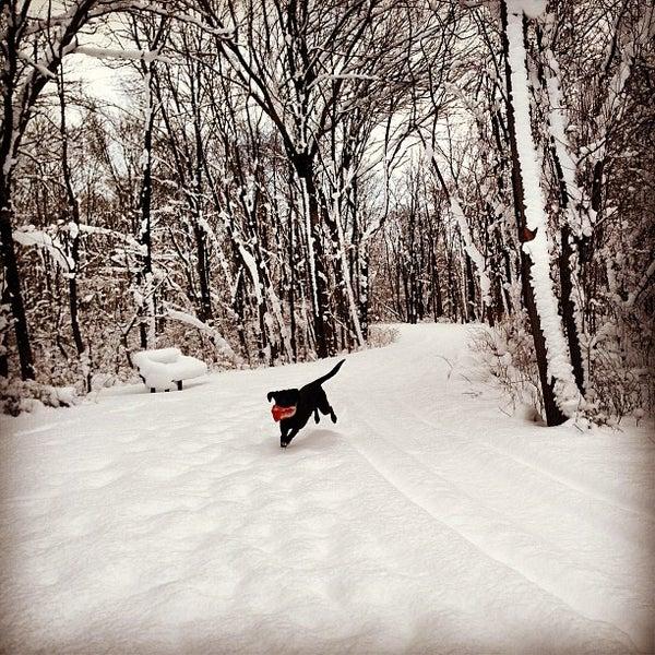 Photo taken at Helder Park by Brandon K. on 1/26/2013