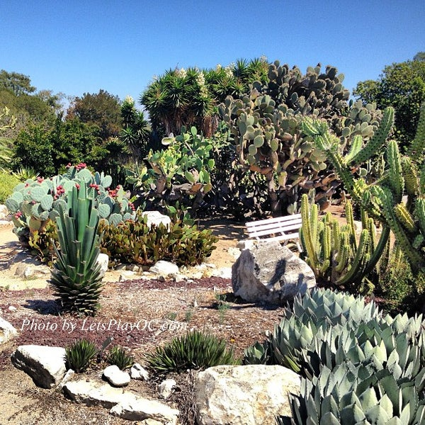 south coast botanic garden garden in palos verdes estates. Black Bedroom Furniture Sets. Home Design Ideas