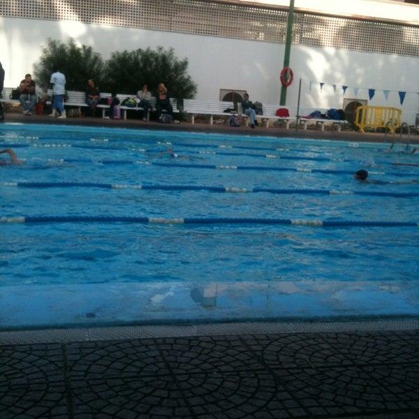 Fotos en piscina julio navarro club nataci n las palmas for Piscina las palmas