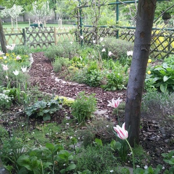 Jardin catherine labour garden in paris for Jardin catherine laboure