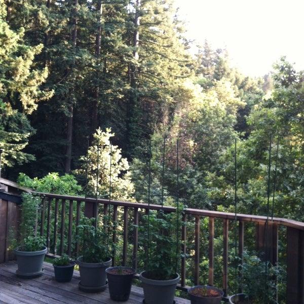 Photo taken at Santa Cruz Mountains by Allison G. on 5/31/2014