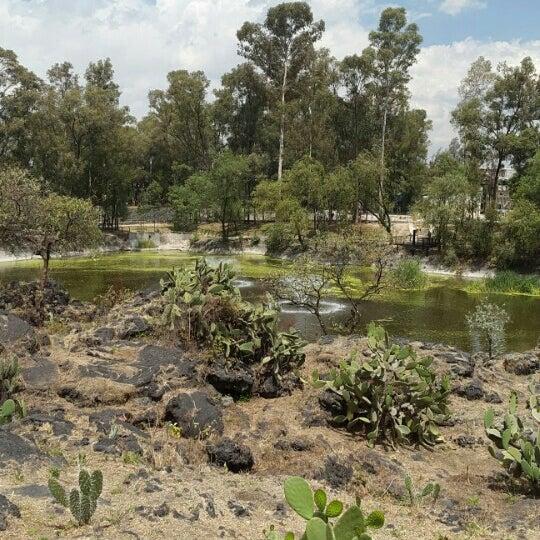 Photo taken at Parque Ecologico Huayamilpas by Lolis Z. on 3/24/2016