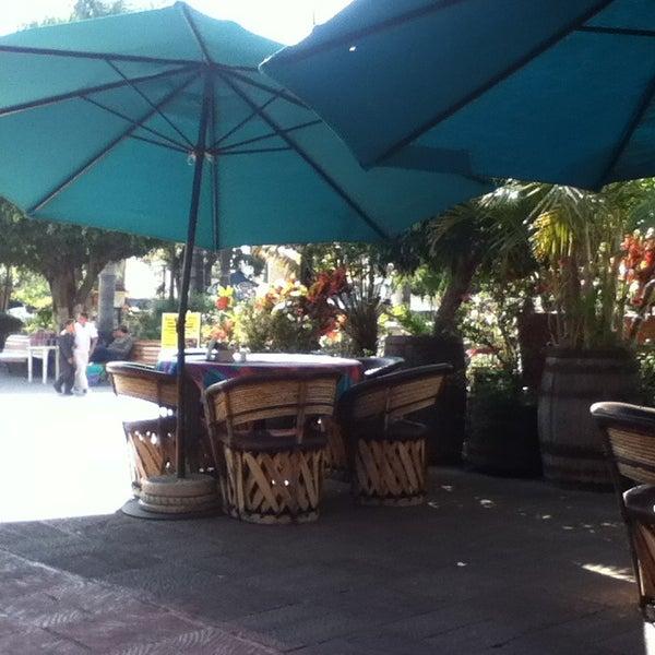 Photos at el jardin restaurant ajijic 1 tip for Restaurant jardin thai