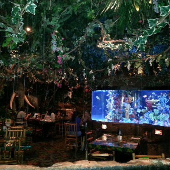 Rainforest Cafe Sawgrass Mills Menu Prices