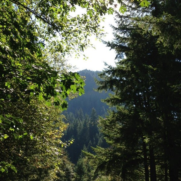 Photo taken at Wahclella Falls Trailhead by Johnpaul M. on 9/1/2013