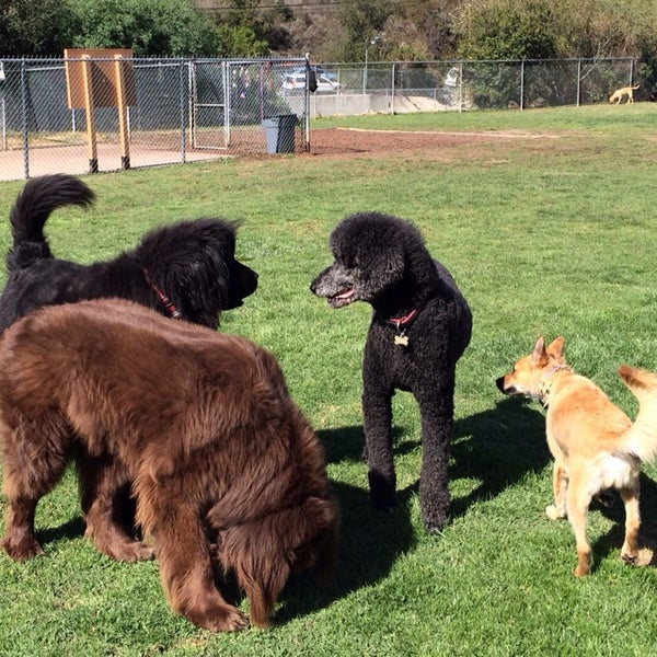 Photo taken at Laguna Canyon Dog Park by Neel K. on 2/16/2014