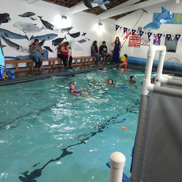 La petite baleen swim school for Kingsbury swimming pool timetable