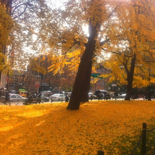 Photo taken at City Hall Park by Angelo D. on 11/21/2011